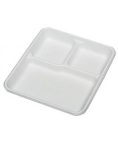7350009269233, RECTANGULAR COMPARTMENT PLATES, WHITE,10X7/8X8, 500/CT